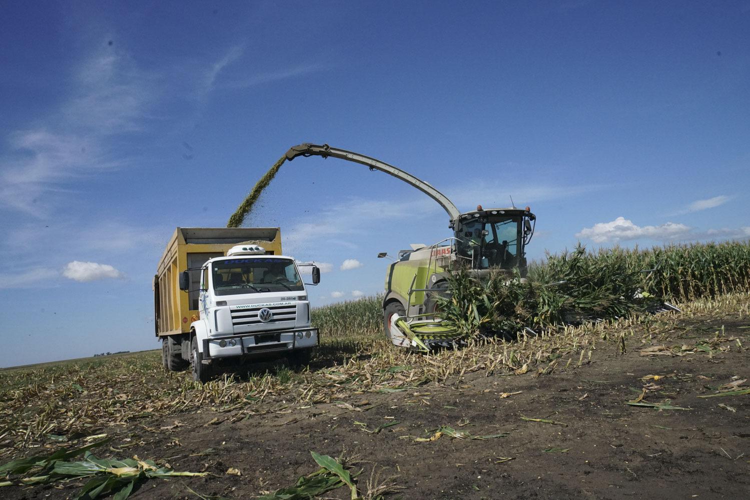 Argentinien Landwirtschaft